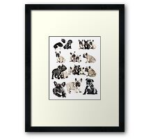 Frenchie Favourites Framed Print