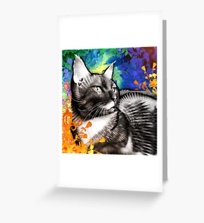 Pancho Greeting Card