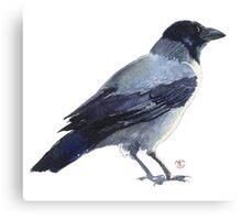 Raven Bird Canvas Print