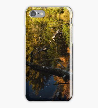 Mesmerizing Fall Reflections iPhone Case/Skin