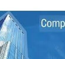 Company Profile Writing Services by careerladder