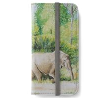 Elephant mother & baby out for a walk iPhone Wallet/Case/Skin