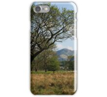 Tree in the valley iPhone Case/Skin