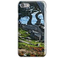 Wind Blow Trees iPhone Case/Skin