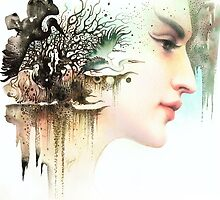 Wild Cranes by Anna Miarczynska