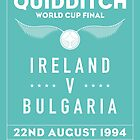 1994 Quidditch World Cup Final by roomiccube