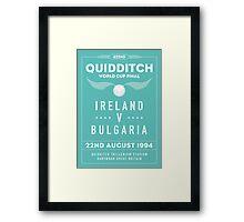 1994 Quidditch World Cup Final Framed Print