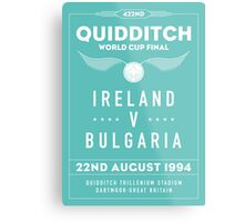 1994 Quidditch World Cup Final Metal Print