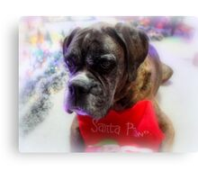 Got My Stocking Ready For Santa - Boxer Dogs Series Canvas Print