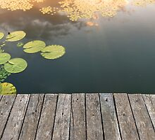 Peaceful place at the pond by iWorkAlone