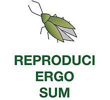 Reproduci Ergo Sum Photographic Print