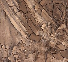 Dry soil closeup before rain by iWorkAlone