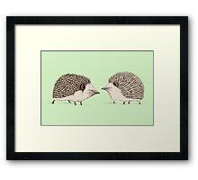Two Hedgehogs Framed Print