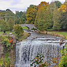 Websters Falls  by AnnDixon