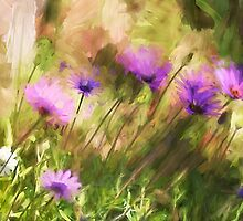 Wild flowers by zzsuzsa
