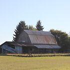 Beautiful Old Barn by Leslie van de Ligt