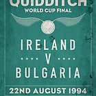 Weathered 1994 Quidditch World Cup Final by roomiccube