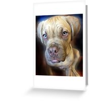 Dogue de Bordeaux - Pouting Daisy Greeting Card