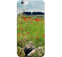 Tranquil Lanscape iPhone Case/Skin