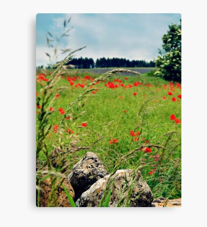 Tranquil Lanscape Canvas Print