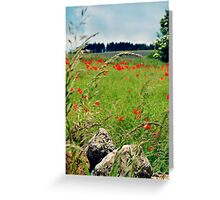 Tranquil Lanscape Greeting Card