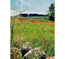 Tranquil Lanscape Photographic Print