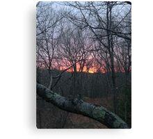 Summer Sunsets Canvas Print