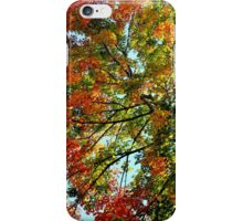 The Glory of Autumn IV iPhone Case/Skin