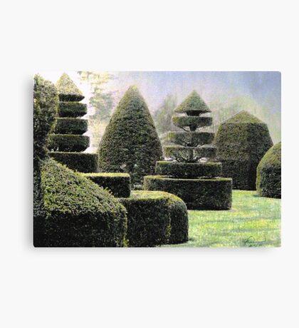 Dawn In A Topiary Garden Canvas Print