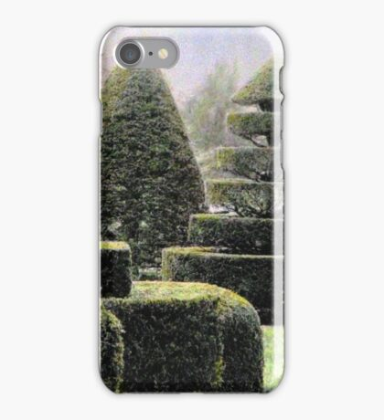 Dawn In A Topiary Garden iPhone Case/Skin