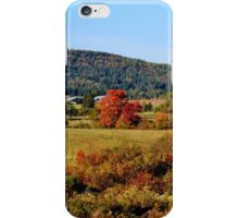 The Glory of Autumn V iPhone Case/Skin