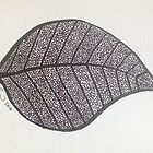 Leaf by dougshaw