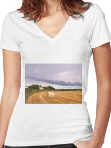 Straw bales Women's Fitted V-Neck T-Shirt