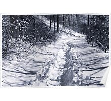 winter hike through snow covered forest Poster