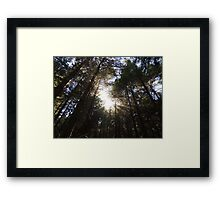 Wondrously In the Morning Framed Print