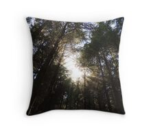 Wondrously In the Morning Throw Pillow