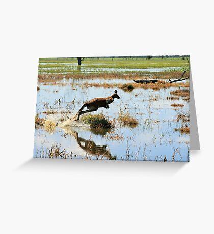 Red Kangaroo in Floodwater Greeting Card