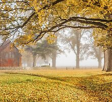 Gostwyck Chapel in the Fall - Uralla NSW Australia by Beth  Wode