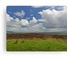It's Raining in Derry Canvas Print