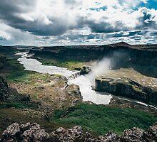 Dettifoss, Iceland by Alessio Michelini