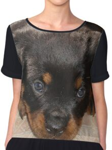 Cute Rottweiler Puppy With Head On Paws Chiffon Top
