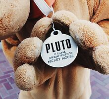 Pluto  by Disneyland1901