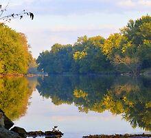 Autumn Shell Rock by LynyrdSky