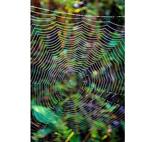 The Spider's Lair Photographic Print