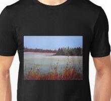 Winter in Island Lake Park  Unisex T-Shirt