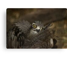 I See Into Your Soul Canvas Print