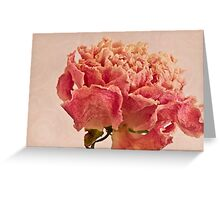 Dried Peony Macro - Textured Background  Greeting Card