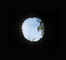 Skyview at the Blarney Castle  by leahdianelove