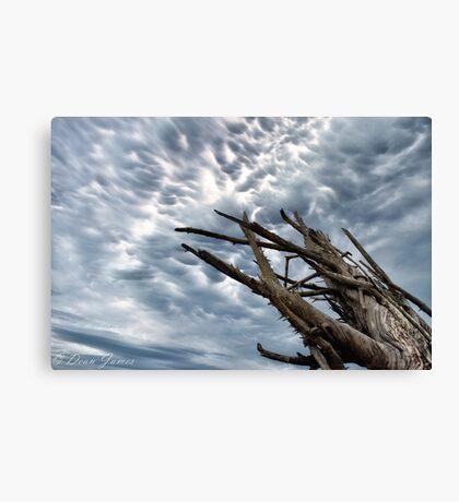 Mammatus Cloud Storm Canvas Print