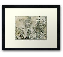 wild grass 30 Framed Print